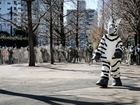Tokyo zoo practices for animal escapes