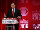 Survey declares Rubio winner of GOP debate