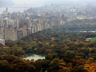Explosion in central park severs man's foot