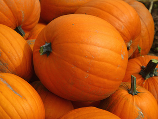 7 recycling ideas for your Halloween pumpkin