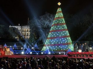 A historical look at the National Christmas Tree