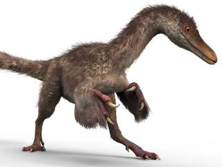 Dinosaurs weren't as scaly as we thought