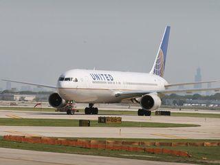 United under fire after rabbit dies on flight