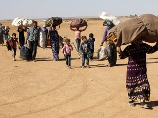 Forced displacement rates hit record numbers