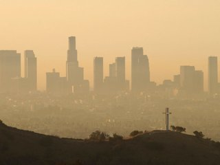 Prenatal exposure to pollution may shorten life