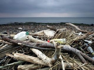 Ocean may hold more plastic than fish by 2050