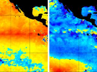 After Godzilla El Nino: What's next?