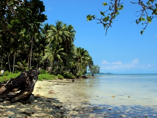 Study shows the Solomon Islands are disappearing