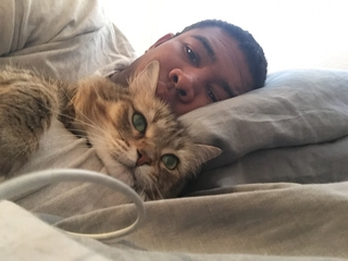 Why Saudi cleric frowns upon cat selfies