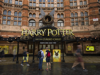 Live owls cut from Harry Potter play after error