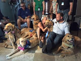 Golden retrievers comfort Orlando victims