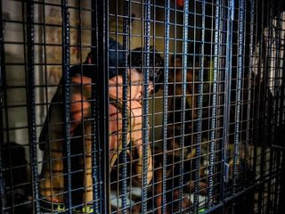 Duterte invites probe but threatens humiliation