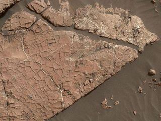 NASA may have found evidence of Mars mud cracks