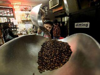 Coffee demand causing deforestation in Africa