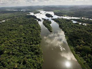 Amazon dams could harm the rainforest
