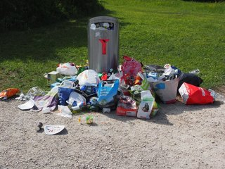 Biofuel from garbage might not be that 'green'