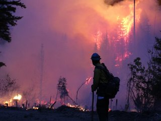 Head of USDA asks for better wildfire funding
