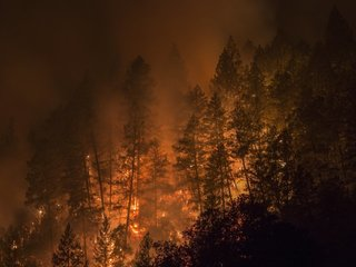 Inmates are fighting California's wildfires
