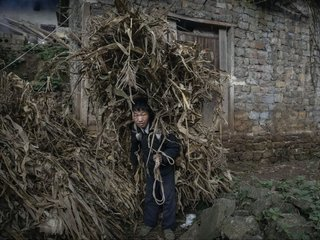 China's Xi promised to end rural poverty by 2020