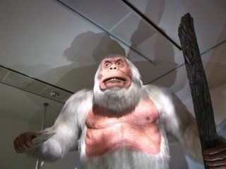 Abominable Snowman (yeti) likely just bear