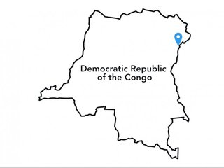 UN peacekeepers killed in D.R. Congo attack
