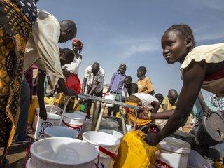 Guinea worm may be next human disease eradicated