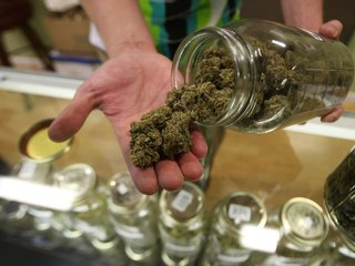 Trump vows support for marijuana-friendly states