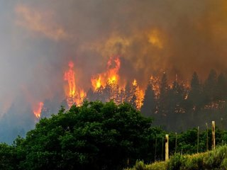 More than 1,800 homes evacuated in Colorado fire