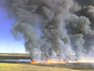 How wildfire smoke affects your health