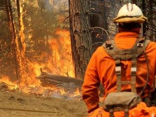 Trump puzzles experts with CA wildfire tweets