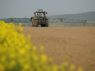 Court orders EPA to stop use of one pesticide