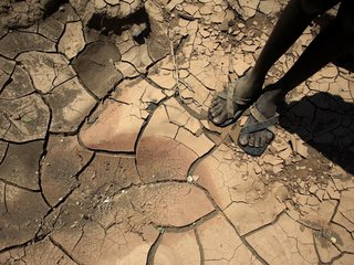 UN: Global hunger is up due to climate change