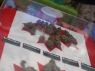 Canadian cannabis users could face lifetime ban