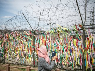 North, South Korea begin removing mines from DMZ